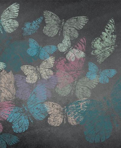 butterflies-chalk-designer-wallpaper
